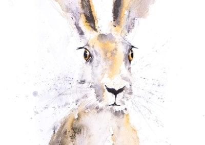 Hermione-Hare-400x284 Prints