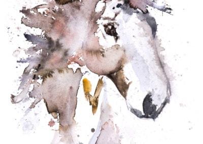 Horse-No3-400x284 Prints