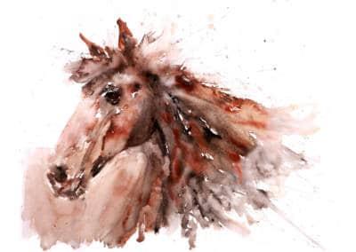 Horse-No5-8841-400x284 Prints