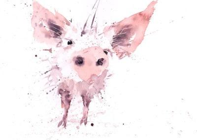 Pig-No1-400x284 Prints