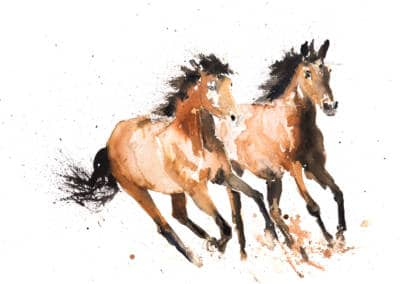 Wild-Horses-400x284 Prints