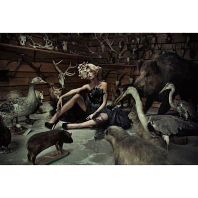 woman-in-taxidermy-scene-tempered-glass-wall-art-100cm-x-150cm-400x400 Art